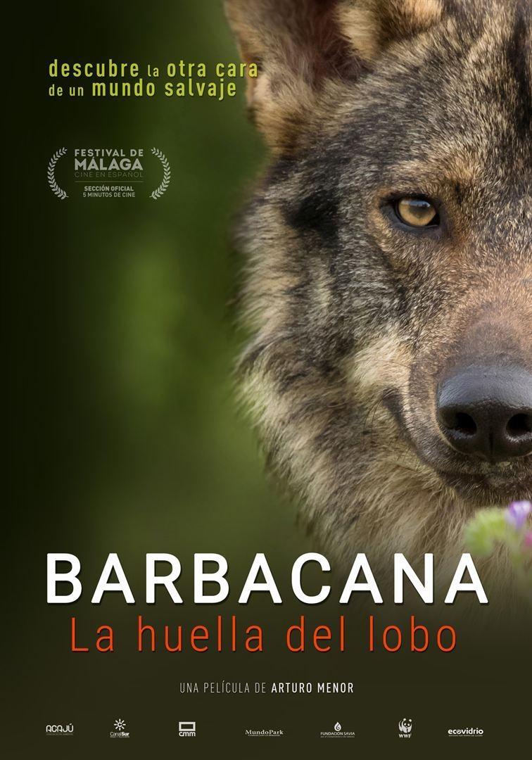 Barbacana, la huella del lobo  (2017)