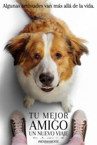 Tu mejor amigo: Un nuevo viaje (2019)